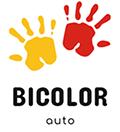 Bicolor – Vopsele & piese auto la prețuri competitive!